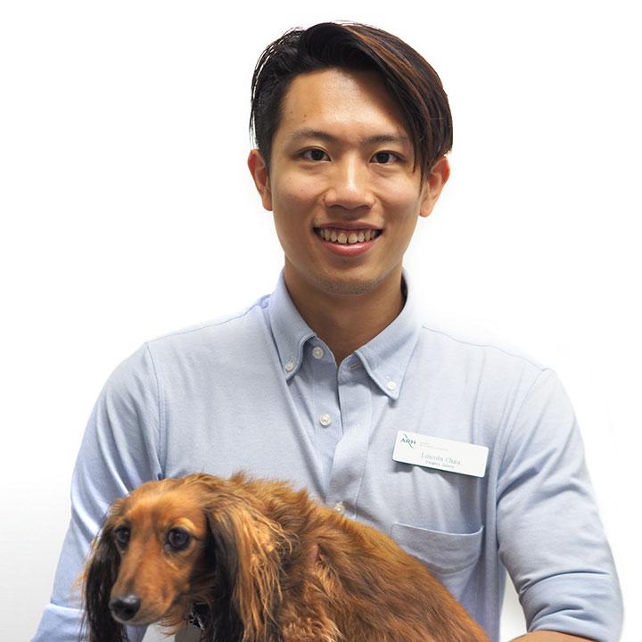 Dr Lincoln Chau